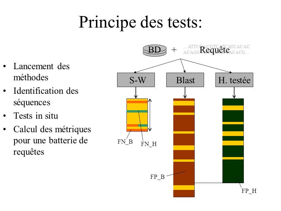 Principe des tests: Lancement des méthodes Identification des séquences Tests in situ Calcul des métriques pour une batterie de requêtes BD S-WBlastH.