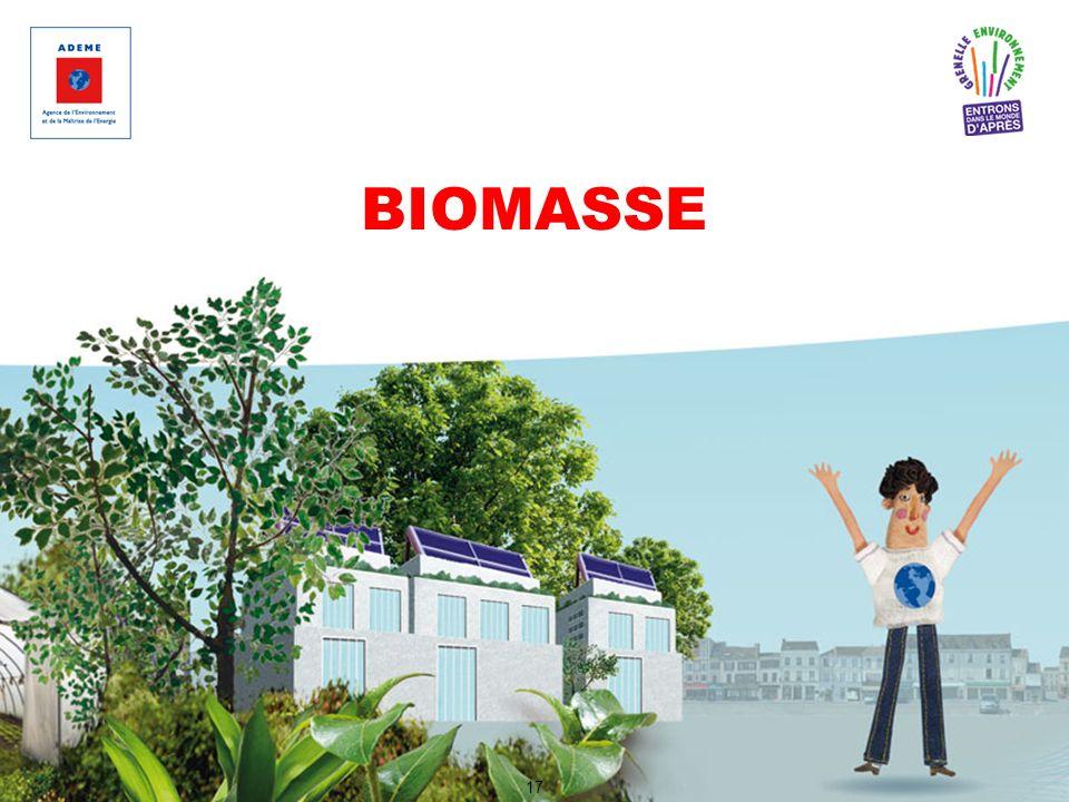 BIOMASSE 17