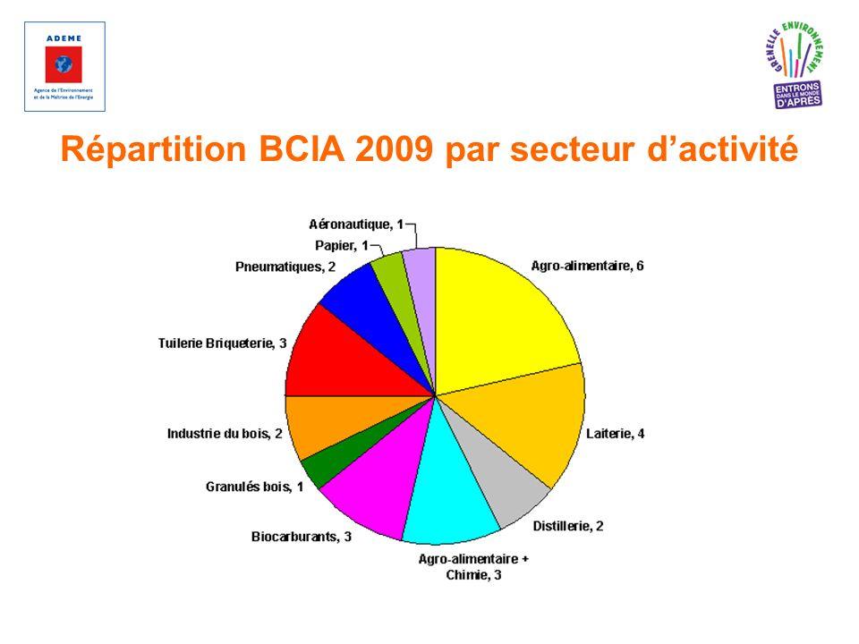 Répartition BCIA 2009 par secteur dactivité