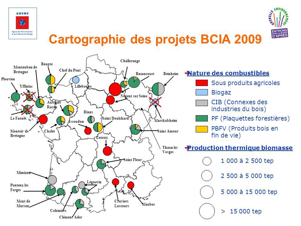 Cartographie des projets BCIA 2009 1 000 à 2 500 tep 2 500 à 5 000 tep 5 000 à 15 000 tep > 15 000 tep Production thermique biomasse Sous produits agr