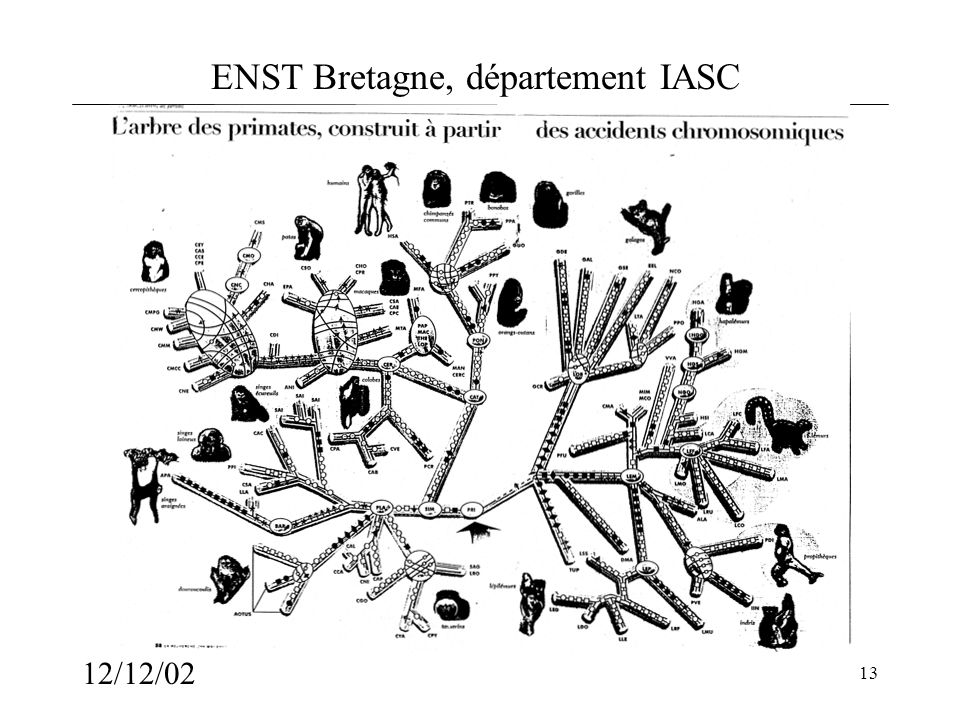 ENST Bretagne, département IASC 12/12/02 13