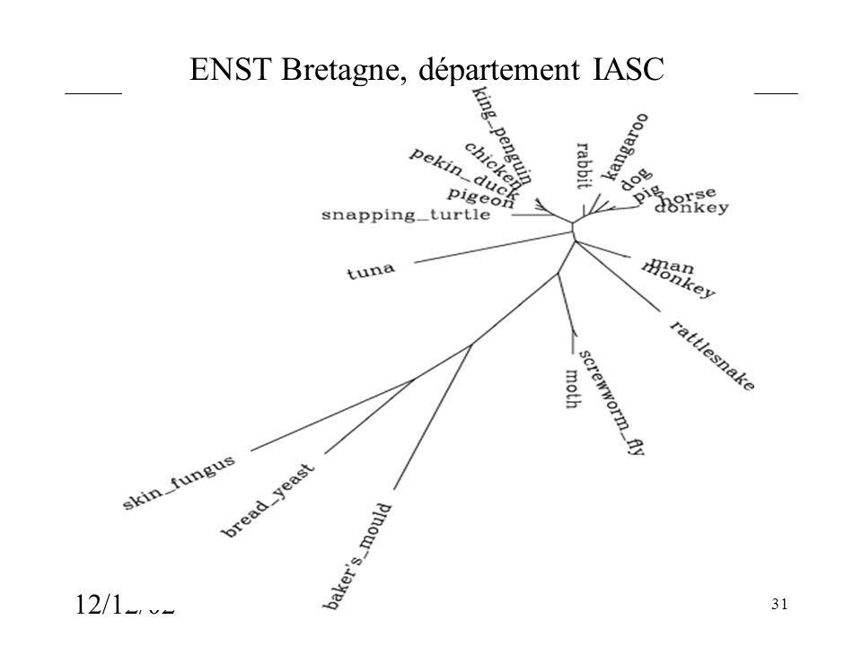 ENST Bretagne, département IASC 12/12/02 31