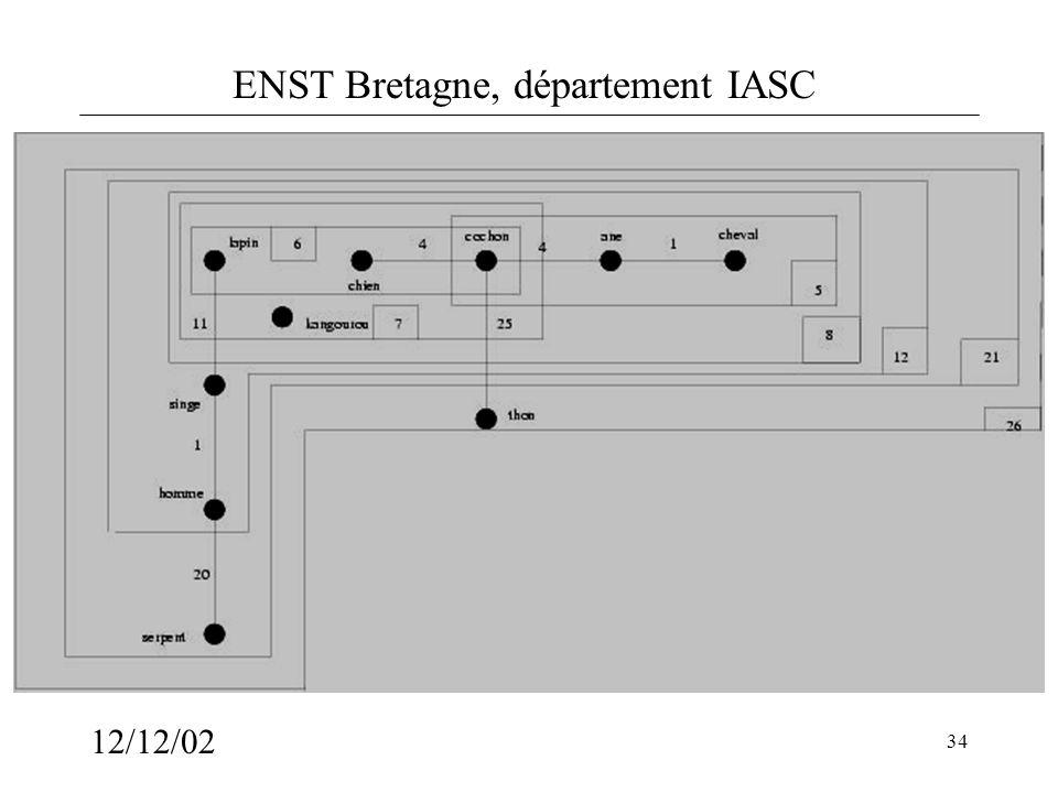 ENST Bretagne, département IASC 12/12/02 34