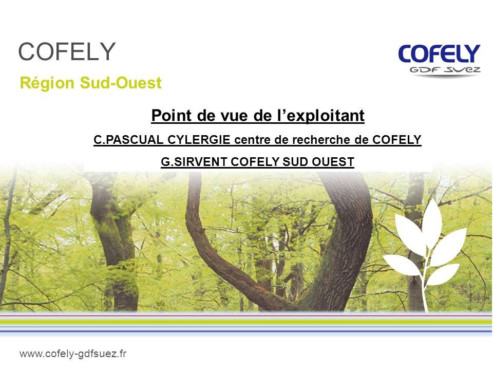 www.cofely-gdfsuez.fr COFELY Région Sud-Ouest Point de vue de lexploitant C.PASCUAL CYLERGIE centre de recherche de COFELY G.SIRVENT COFELY SUD OUEST