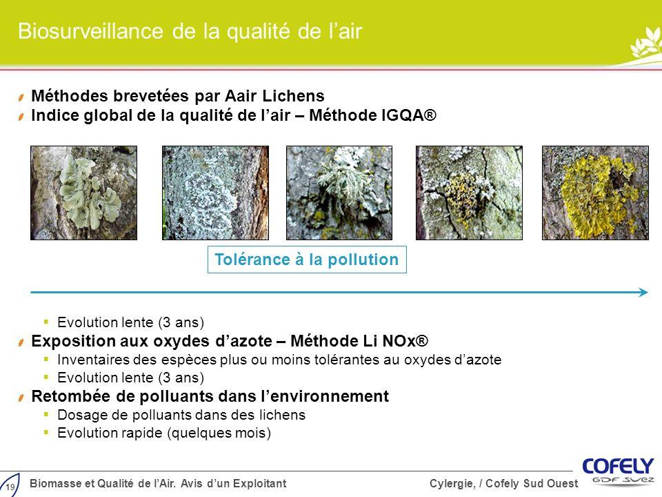 19 Biomasse et Qualité de lAir. Avis dun Exploitant Cylergie, / Cofely Sud Ouest Biosurveillance de la qualité de lair Méthodes brevetées par Aair Lic