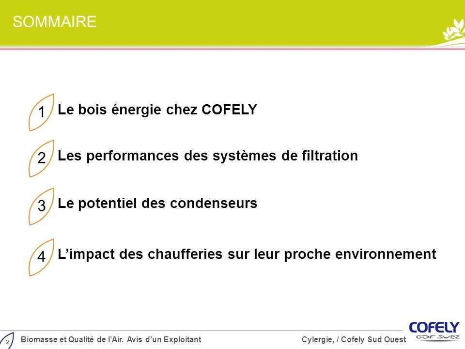 2 Biomasse et Qualité de lAir. Avis dun Exploitant Cylergie, / Cofely Sud Ouest SOMMAIRE 1 Les performances des systèmes de filtration 2 Le potentiel