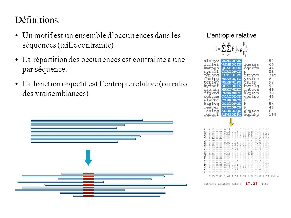 Définitions: Un motif est un ensemble doccurrences dans les séquences (taille contrainte) La répartition des occurrences est contrainte à une par séquence.