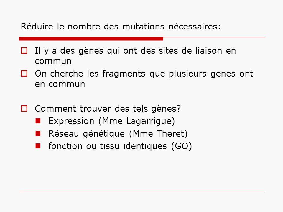 Réduire le nombre des mutations nécessaires: Il y a des gènes qui ont des sites de liaison en commun On cherche les fragments que plusieurs genes ont