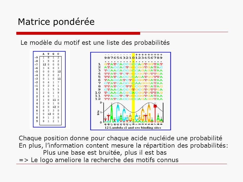 Matrice pondérée Chaque position donne pour chaque acide nucléide une probabilité En plus, linformation content mesure la répartition des probabilités