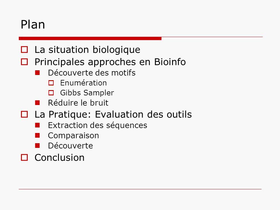 Plan La situation biologique Principales approches en Bioinfo Découverte des motifs Enumération Gibbs Sampler Réduire le bruit La Pratique: Evaluation