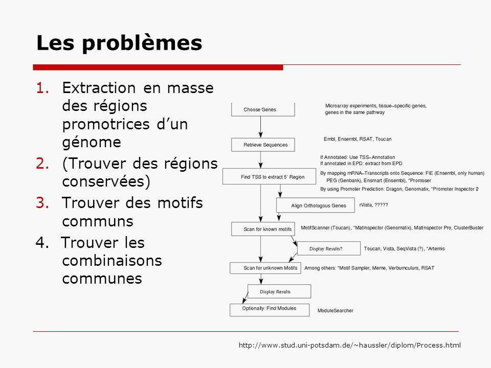 Les problèmes 1.Extraction en masse des régions promotrices dun génome 2.(Trouver des régions conservées) 3.Trouver des motifs communs 4. Trouver les