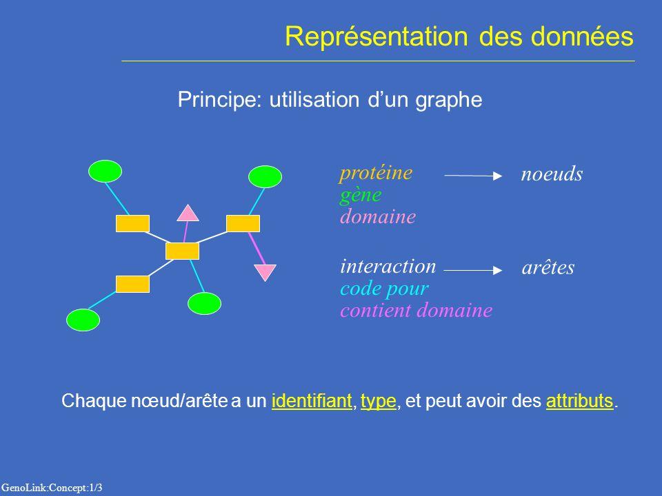 Représentation des données Principe: utilisation dun graphe contient domaine code pour interaction protéine noeuds arêtes gène domaine Chaque nœud/arête a un identifiant, type, et peut avoir des attributs.