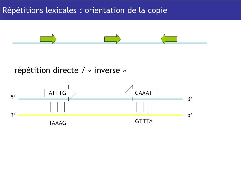 Répétitions lexicales : orientation de la copie répétition directe / « inverse » ATTTG GTTTA CAAAT TAAAG 5 3 5 3