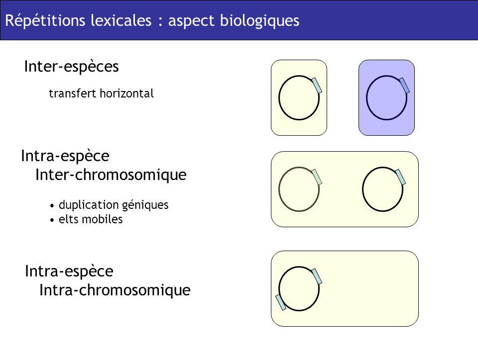 Répétitions lexicales : aspect biologiques Inter-espèces transfert horizontal Intra-espèce Inter-chromosomique duplication géniques elts mobiles Intra-espèce Intra-chromosomique