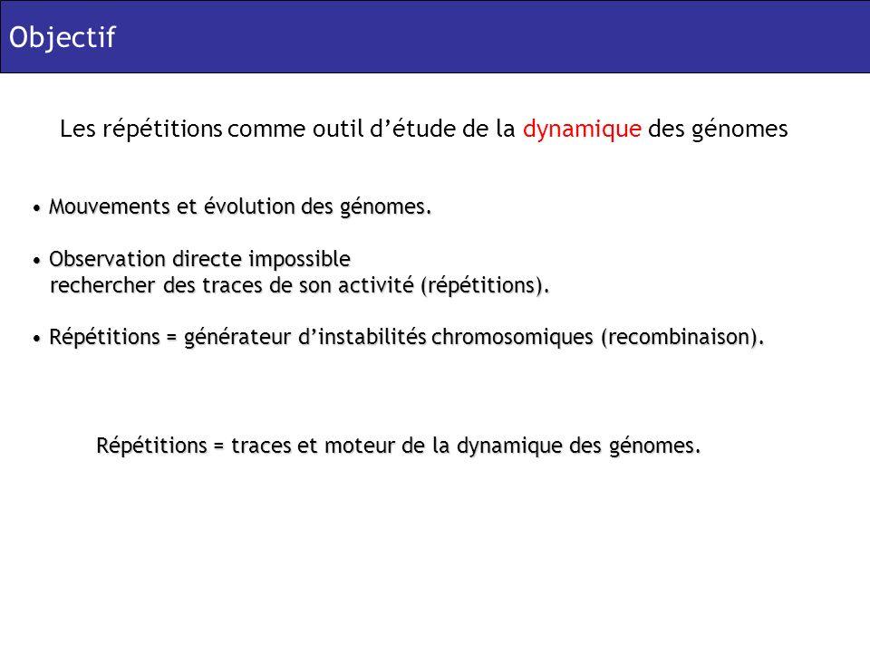 Mouvements et évolution des génomes. Mouvements et évolution des génomes.