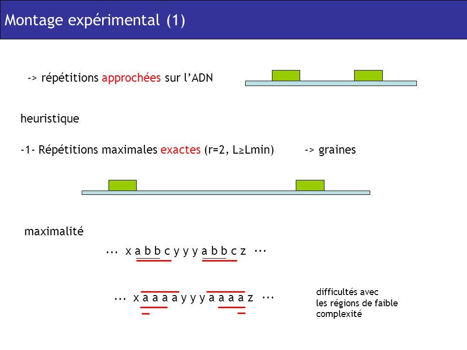Montage expérimental (1) -> répétitions approchées sur lADN heuristique -1- Répétitions maximales exactes (r=2, LLmin)-> graines maximalité x a b b c y y y a b b c z...