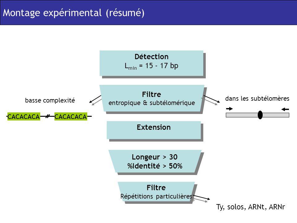 dans les subtélomères basse complexité CACACACA Extension Détection L min = 15 - 17 bp Détection L min = 15 - 17 bp Filtre entropique & subtélomérique Filtre entropique & subtélomérique Filtre Répétitions particulières Filtre Répétitions particulières Ty, solos, ARNt, ARNr Longeur > 30 %Identité > 50% Longeur > 30 %Identité > 50% Montage expérimental (résumé)