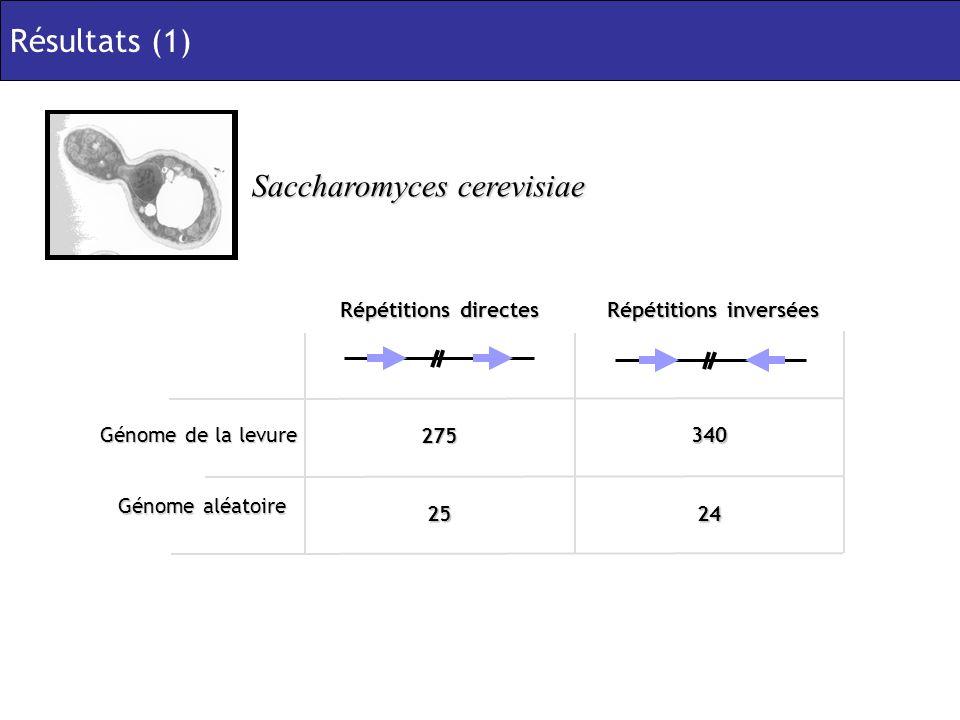 Saccharomyces cerevisiae Génome de la levure 275 340 Répétitions directes Répétitions inversées 2524 Génome aléatoire Résultats (1)