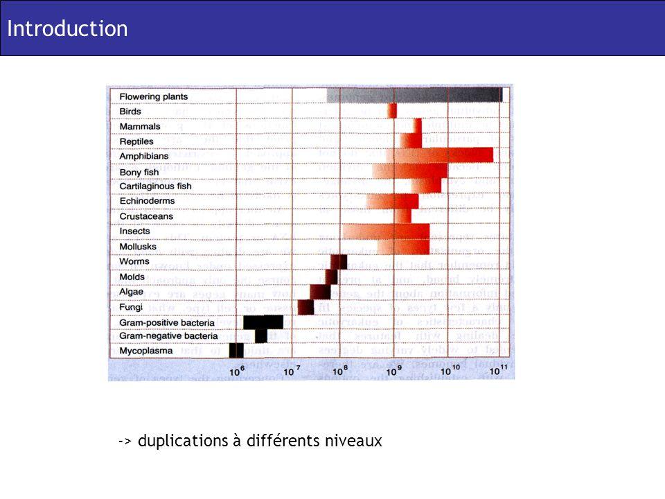 Introduction -> duplications à différents niveaux