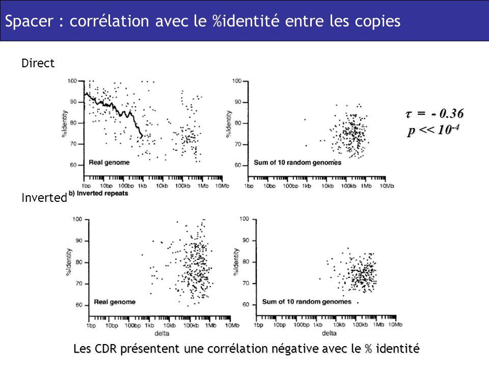 Les CDR présentent une corrélation négative avec le % identité Spacer : corrélation avec le %identité entre les copies = - 0.36 p << 10 -4 = - 0.36 p << 10 -4 Direct Inverted