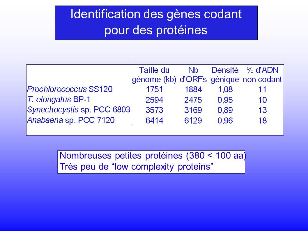 Identification des gènes codant pour des protéines Nombreuses petites protéines (380 < 100 aa) Très peu de low complexity proteins