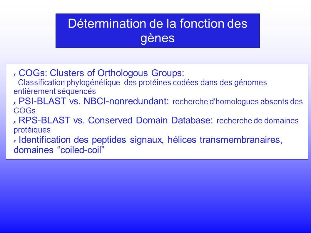 COGs: Clusters of Orthologous Groups: Classification phylogénétique des protéines codées dans des génomes entièrement séquencés PSI-BLAST vs.