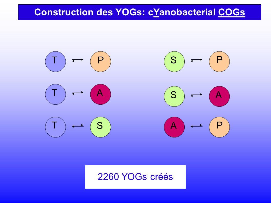S T T T A P P S SA P A 2260 YOGs créés Construction des YOGs: cYanobacterial COGs