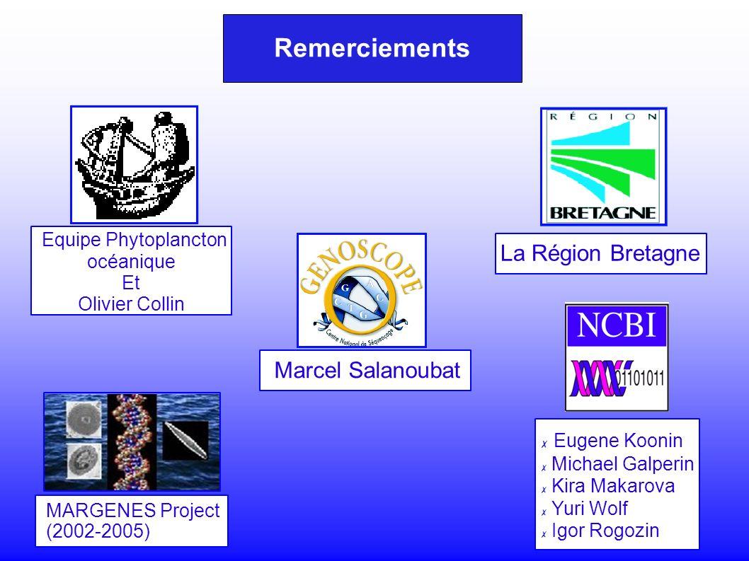 Remerciements Eugene Koonin Michael Galperin Kira Makarova Yuri Wolf Igor Rogozin MARGENES Project (2002-2005) Marcel Salanoubat Equipe Phytoplancton océanique Et Olivier Collin La Région Bretagne