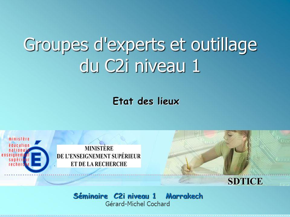 SDTICE Groupes d experts et outillage du C2i niveau 1 Gérard-Michel Cochard Séminaire C2i niveau 1 Marrakech Etat des lieux