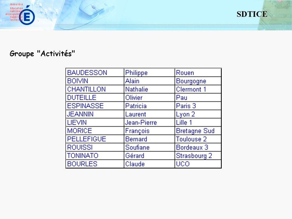 4 SDTICE Groupe Activités