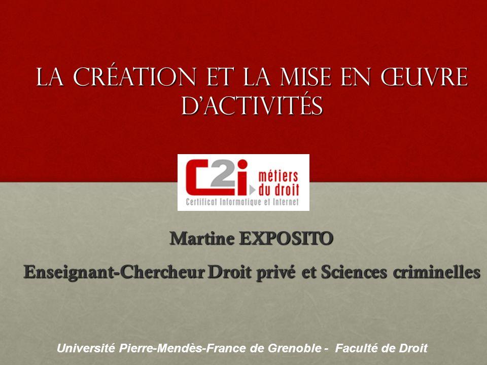 Université Pierre-Mendès-France de Grenoble - Faculté de Droit Martine EXPOSITO Enseignant-Chercheur Droit privé et Sciences criminelles Université Pi