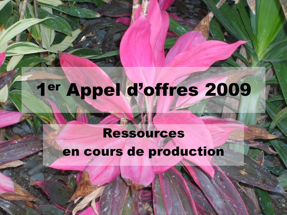 1 er Appel doffres 2009 Ressources en cours de production