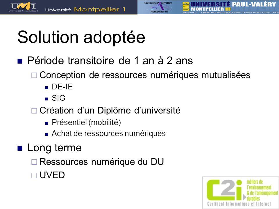 Solution adoptée Période transitoire de 1 an à 2 ans Conception de ressources numériques mutualisées DE-IE SIG Création dun Diplôme duniversité Présen