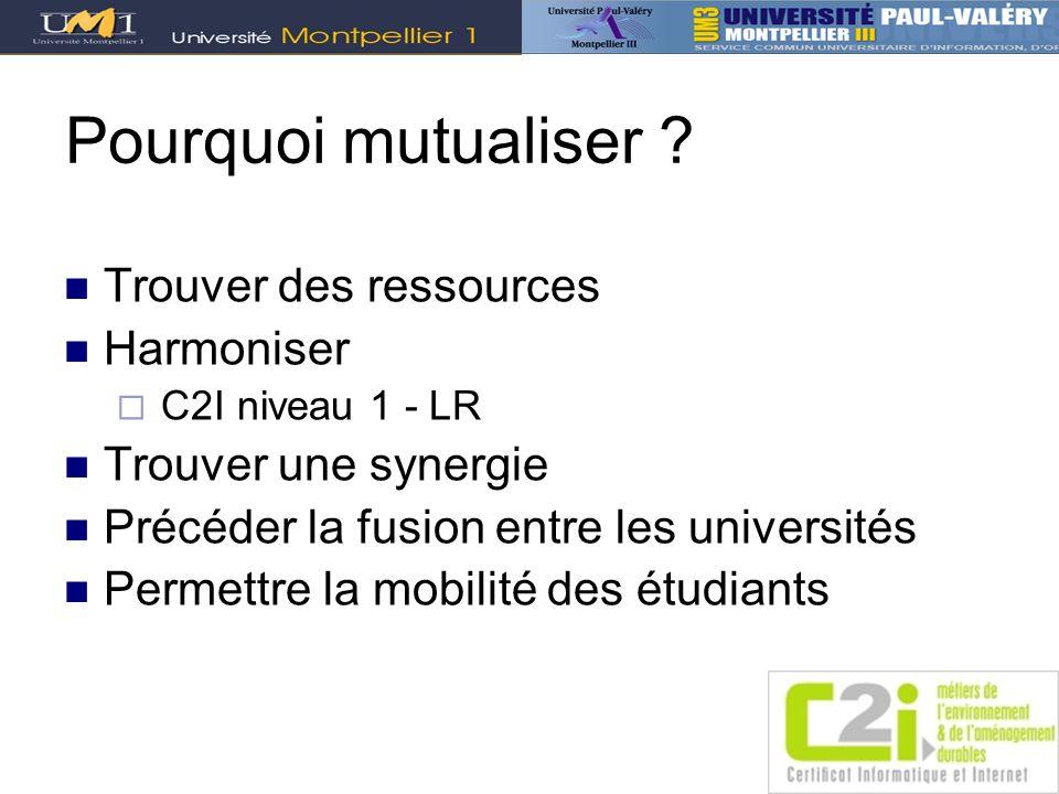 Pourquoi mutualiser ? Trouver des ressources Harmoniser C2I niveau 1 - LR Trouver une synergie Précéder la fusion entre les universités Permettre la m