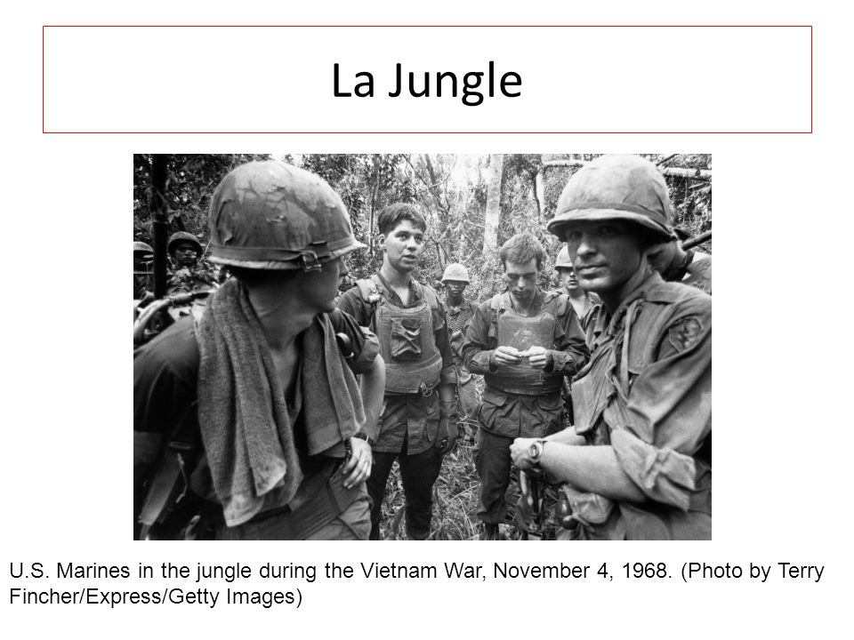 La Jungle U.S. Marines in the jungle during the Vietnam War, November 4, 1968. (Photo by Terry Fincher/Express/Getty Images)
