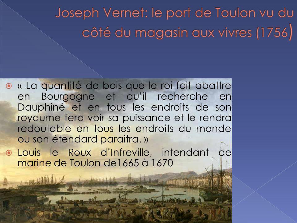 « La quantité de bois que le roi fait abattre en Bourgogne et quil recherche en Dauphiné et en tous les endroits de son royaume fera voir sa puissance et le rendra redoutable en tous les endroits du monde ou son étendard paraitra.