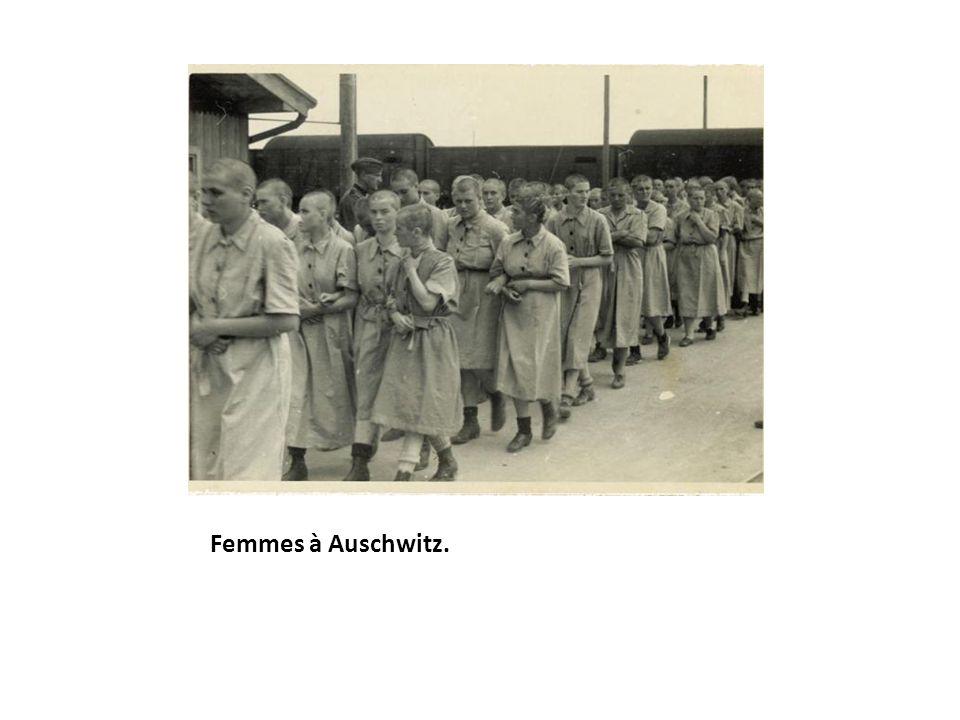 Femmes à Auschwitz.