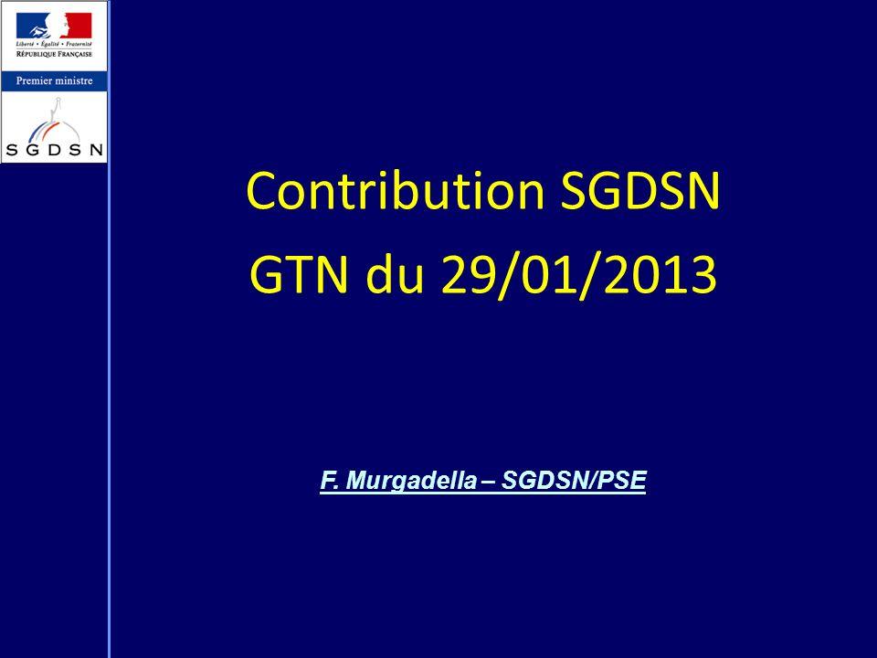 Contribution SGDSN GTN du 29/01/2013 F. Murgadella – SGDSN/PSE