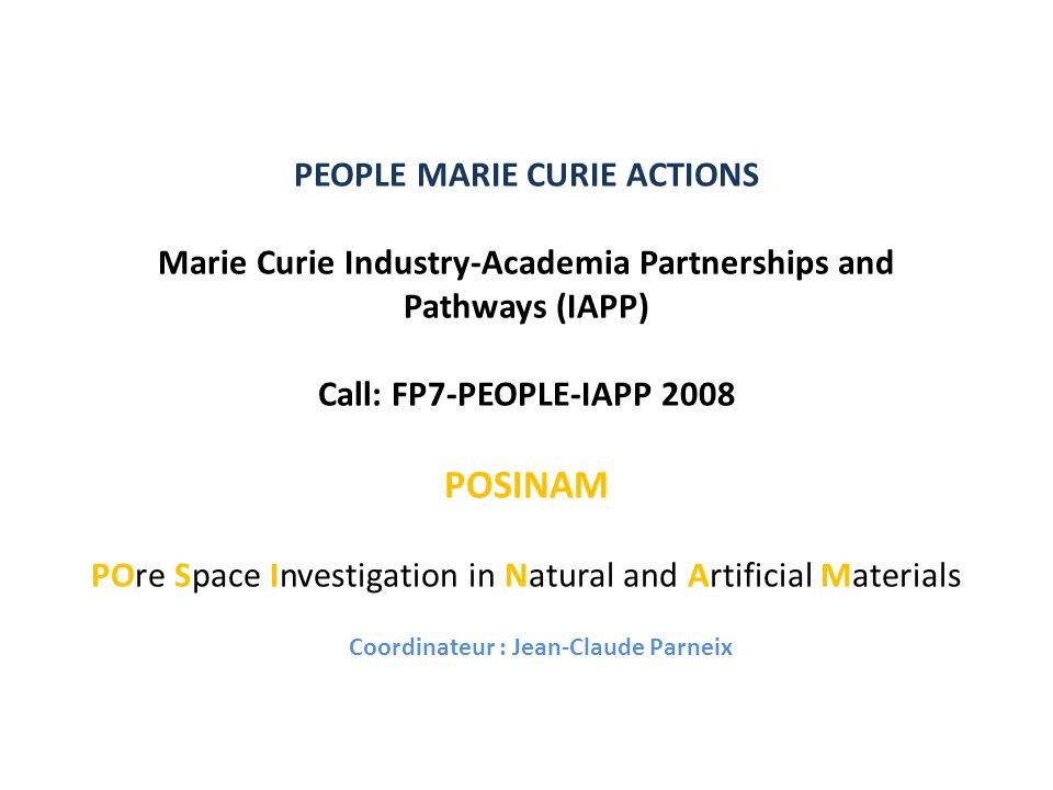 PEOPLE MARIE CURIE ACTIONS Marie Curie Industry-Academia Partnerships and Pathways (IAPP) Call: FP7-PEOPLE-IAPP 2008 POSINAM POre Space Investigation