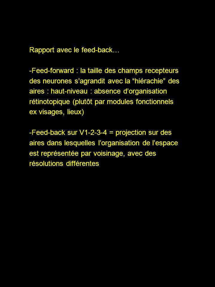 Rapport avec le feed-back… -Feed-forward : la taille des champs recepteurs des neurones sagrandit avec la hiérachie des aires : haut-niveau : absence dorganisation rétinotopique (plutôt par modules fonctionnels ex visages, lieux) -Feed-back sur V1-2-3-4 = projection sur des aires dans lesquelles lorganisation de lespace est représentée par voisinage, avec des résolutions différentes