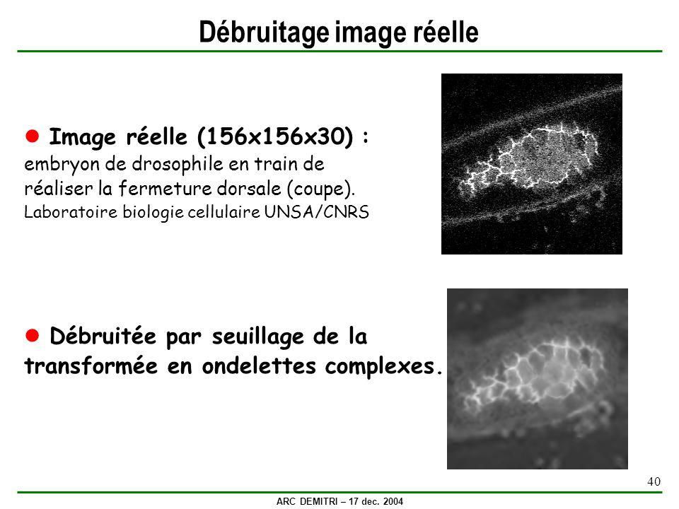 ARC DEMITRI – 17 dec. 2004 40 Débruitage image réelle Image réelle (156x156x30) : embryon de drosophile en train de réaliser la fermeture dorsale (cou