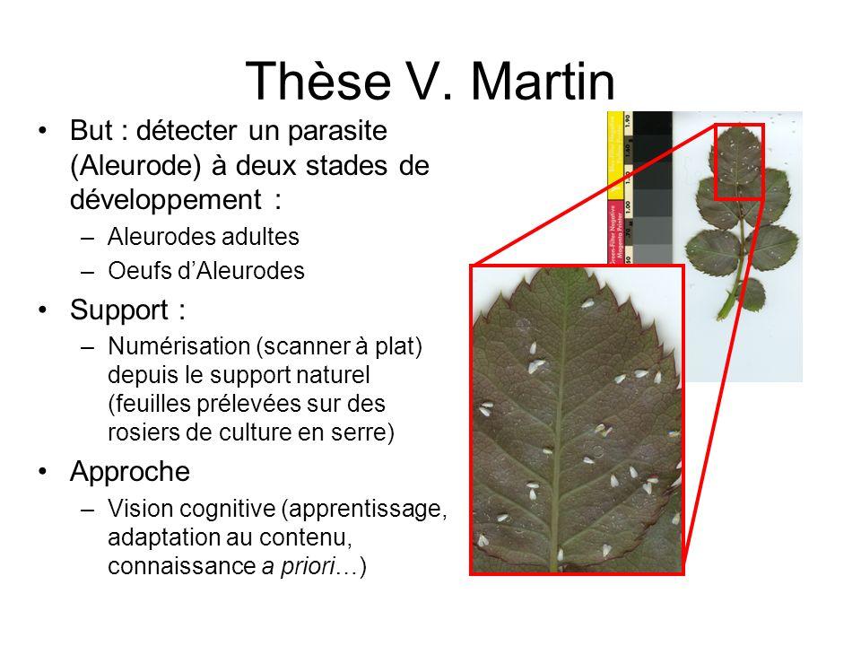 Thèse V. Martin But : détecter un parasite (Aleurode) à deux stades de développement : –Aleurodes adultes –Oeufs dAleurodes Support : –Numérisation (s