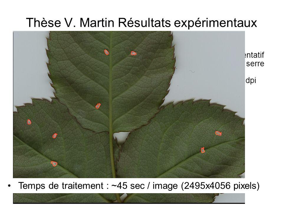 Thèse V. Martin Résultats expérimentaux Échantillon représentatif de 200 images (=1 serre de 200 m 2 ) dune résolution de 1200 dpi Temps de traitement