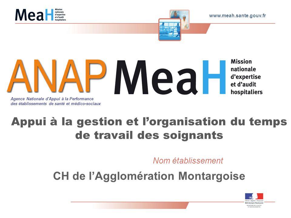 www.meah.sante.gouv.fr Nom établissement Appui à la gestion et lorganisation du temps de travail des soignants CH de lAgglomération Montargoise Agence