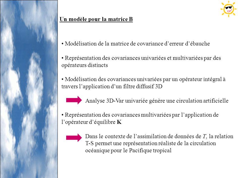 Un modèle pour la matrice B Modélisation de la matrice de covariance derreur débauche Représentation des covariances univariées et multivariées par de