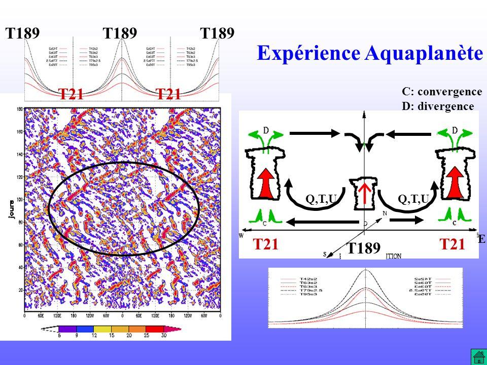 Expérience Aquaplanète T189 T21 T189 E C: convergence D: divergence Q,T,U T21 T189 T21 T189 T21