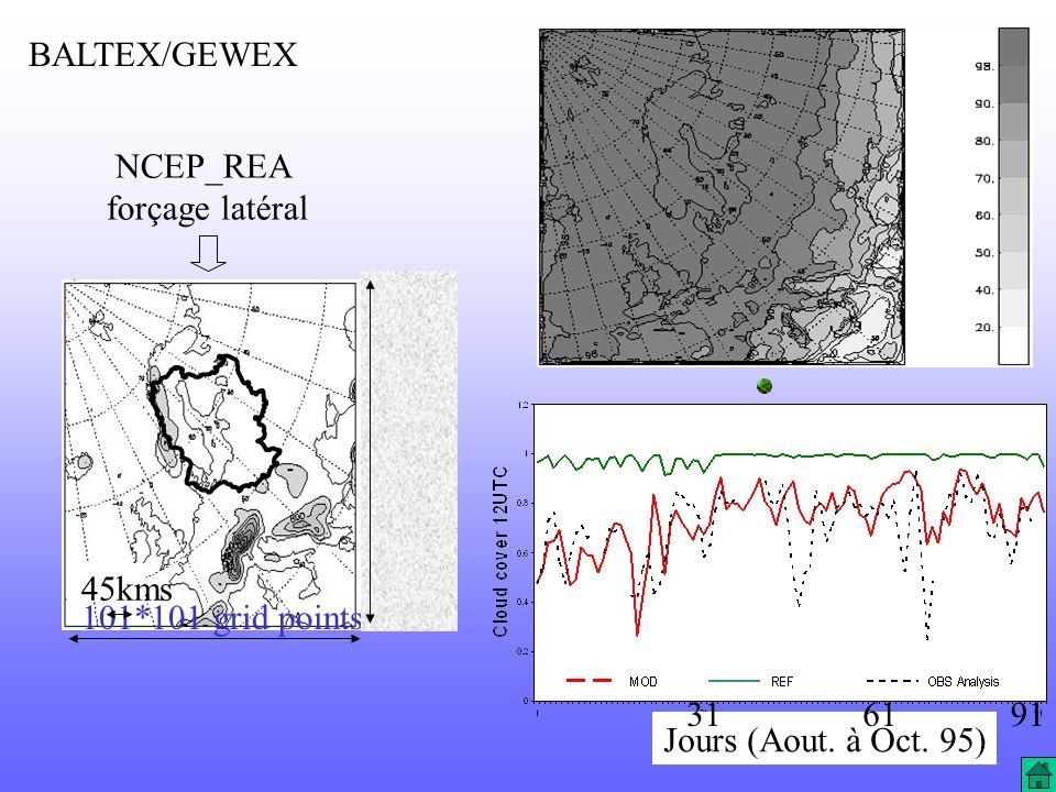 NCEP_REA forçage latéral 101*101 grid points 45kms BALTEX/GEWEX Jours (Aout. à Oct. 95) 316191