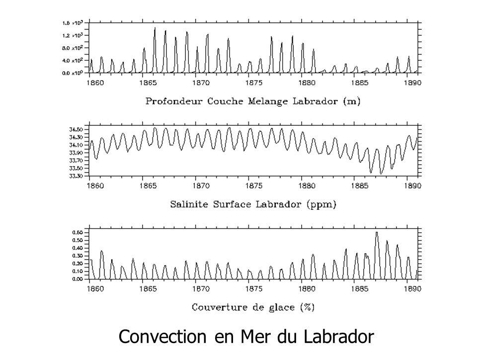 Convection en Mer du Labrador