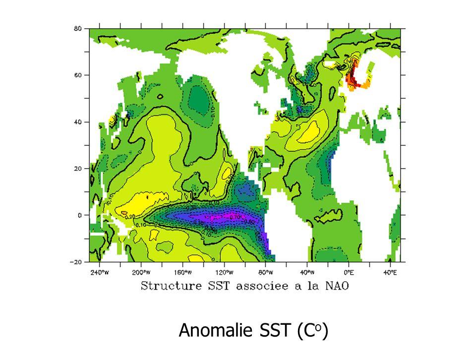 Anomalie SST (C o )