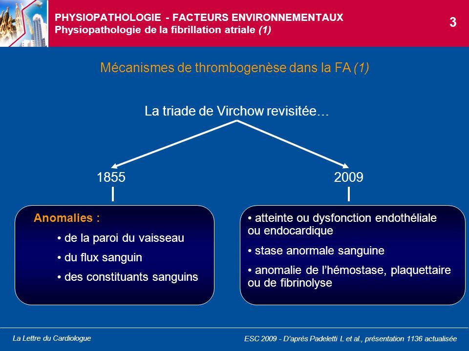 La Lettre du Cardiologue PHYSIOPATHOLOGIE - FACTEURS ENVIRONNEMENTAUX Physiopathologie de la fibrillation atriale (2) Mécanismes de thrombogenèse dans la FA (2) OreilletteTissu atrial Activation plaquettaire ß-thromboglobuline Hémoconcentration hématocrite Stase sanguine Anomalies cinétiques de la paroi Formation de thrombus Thrombo-embolie et AVC Activation coagulation D-dimères prothrombine 1 et 2 complexe thrombine antithrombine Dysfonction/atteinte endothéliale Inflammation FvW, IL-6 Modification du tissu atrial : hypertrophie myocytaire sclérose fibroélastose modification pathologique de la matrice extracellulaire Formation de réentrées focales Fibrillation atriale La triade de Virchow revisitée… 4 ESC 2009 - Daprès Padeletti L et al., présentation 1136 actualisée